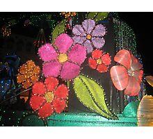 Vivid Colors Photographic Print
