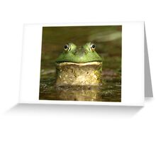 Bull Frog  Greeting Card