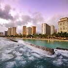 Wild Waikiki by Dean Symons