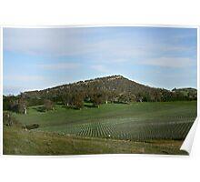 Summit & Vines - Nairne Poster
