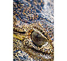 Crocodile eye Photographic Print