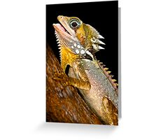Boyd's Forest Dragon [Hypsilurus boydii] Greeting Card