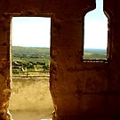 The view from Les Baux de Provence by Chris Richards