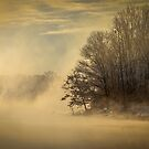 Winter Sunrise On The Wisconsin River by Thomas Young