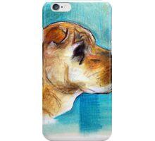 Shar Pei iPhone Case/Skin