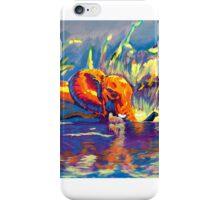 Technicolour Elephant iPhone Case/Skin