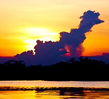 Poodle in the sky by chazthomson