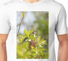 Yellow-rumped Warbler Unisex T-Shirt