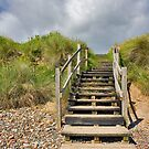 Dune Stairs by Jenn Ridley