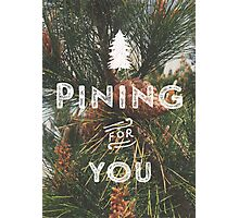 PINING FOR YOU Photographic Print