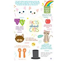 Facts About Cats Photographic Print
