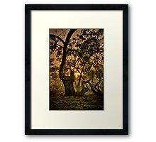 """Ghostly Gums"" Framed Print"