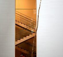 MOMA interior by chidesigner