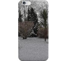 Snowy Garden Colour Engraving iPhone Case/Skin