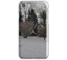 Snowy Garden Colour Engraving iPhone Case/Skin