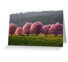 Blossoms in the Fields..*Spring is Coming* Greeting Card