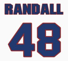 National baseball player Randall Delgado jersey 48 by imsport