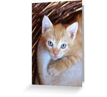 blu eyes Greeting Card