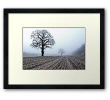 Old oak-trees in winter morning mist Framed Print