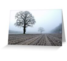 Old oak-trees in winter morning mist Greeting Card