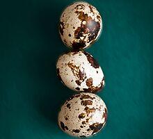 Quail Eggs by bgbcreative
