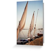 Feluccas in Luxor, Egypt Greeting Card