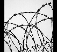 Razor Wire by Amanda McGreck