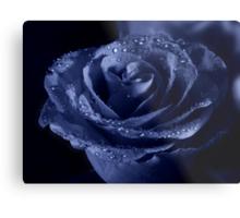 Blueberry rose Metal Print