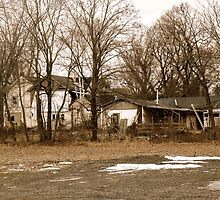 Fixer Upper by MotherNature2