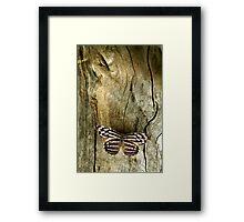 Wood Work Framed Print