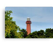 Old Barney - Barnegat Light House NJ - Behind the Trees Canvas Print