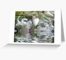 Quads flooded Greeting Card