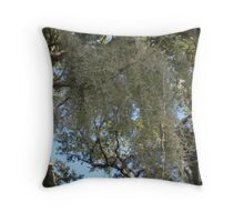 Spanish moss in wintertime Throw Pillow