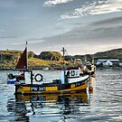 Lagavulin Bay, Islay by Alisdair Gurney