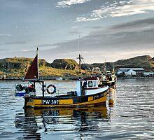 Lagavulin Bay, Islay by Alisdair Gurney