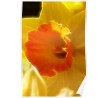 Neon Daffodil Delight Poster