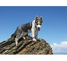 Bella on the Mountain above Farmington Canyon Photographic Print
