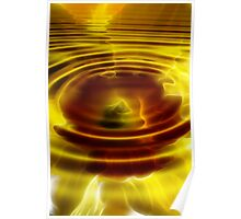 Sunset Daffodil Pond Poster