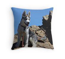 Bella on the Mountain above Farmington Canyon 3 Throw Pillow