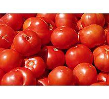 Farmers Market Tomatoes Photographic Print