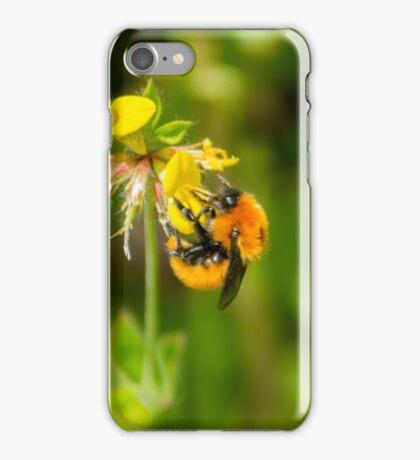 112512 bee iPhone Case/Skin