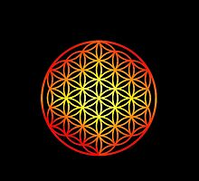 Flower of Life  by Moodphaser