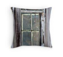 A Window on a Window Throw Pillow