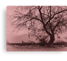 Pink Desolation Canvas Print