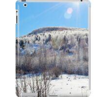The Glory of Freezing Rain iPad Case/Skin