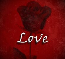 Statement of Love Red Rose by Adri Turner