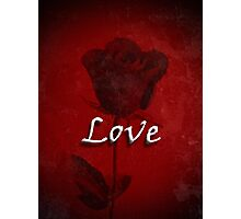 Statement of Love Red Rose Photographic Print