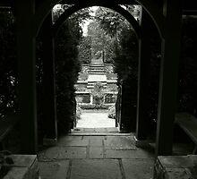 Into the Garden by Victoria DeMore