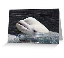 Beluga Whale Greeting Card