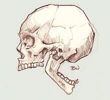 Backwards Jaw - A Curiosity by Nycherus